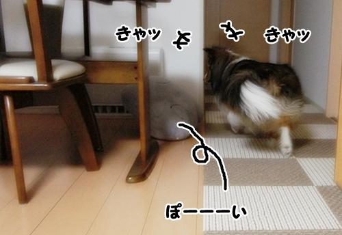 きんとうん6