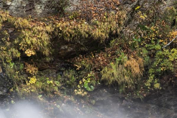 森町滝しぶき-7962