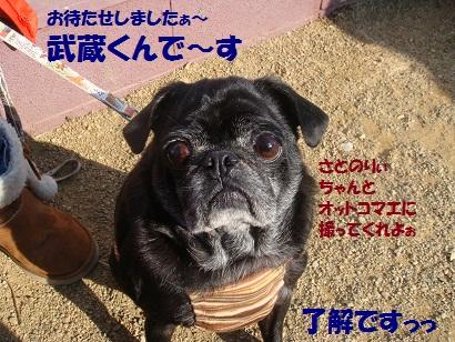 20110322181026cac - コピー