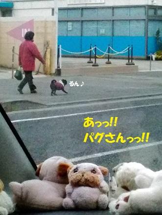 P_20160131_103856 - コピー