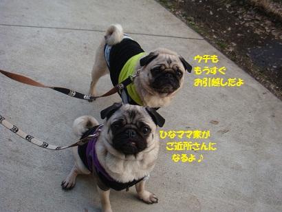 201201豊州3