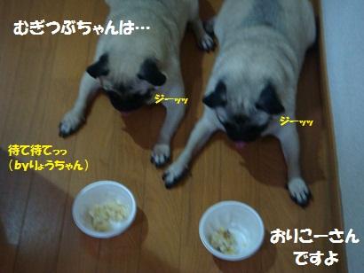 201108さとのり屋4