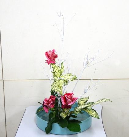 DSC00980-クリスマスの花151214