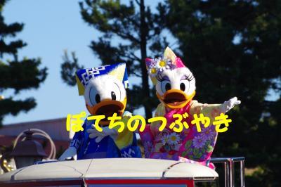 20160101 land (1)