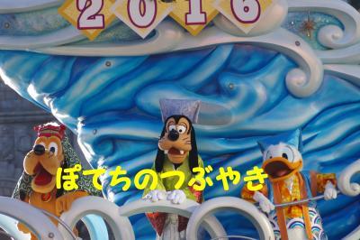 20160101 sea (3)