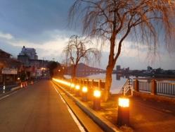 木曽川とライトアップされた犬山城