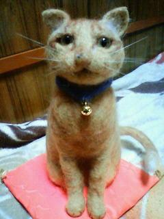 はじめまして メタボ猫店長の子分です