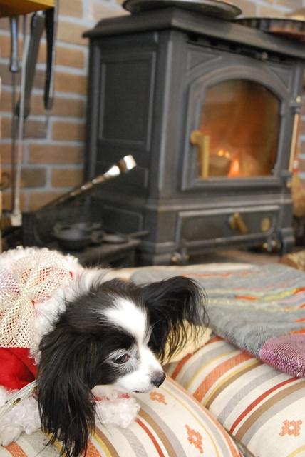 ルビー暖炉の前で