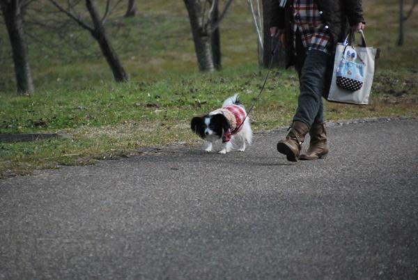 公園お散歩中