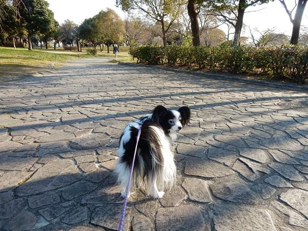 公園にて4