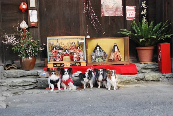 黒江の町のお雛様と記念撮影