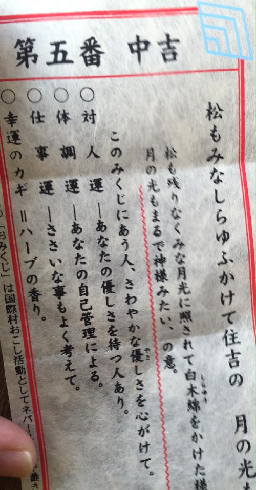 sumiyoshitaisya_20160104.jpg