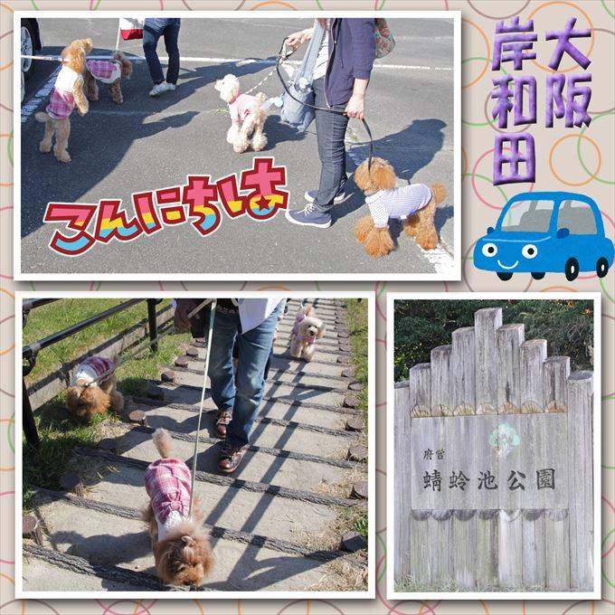1_201512132011510b0.jpg