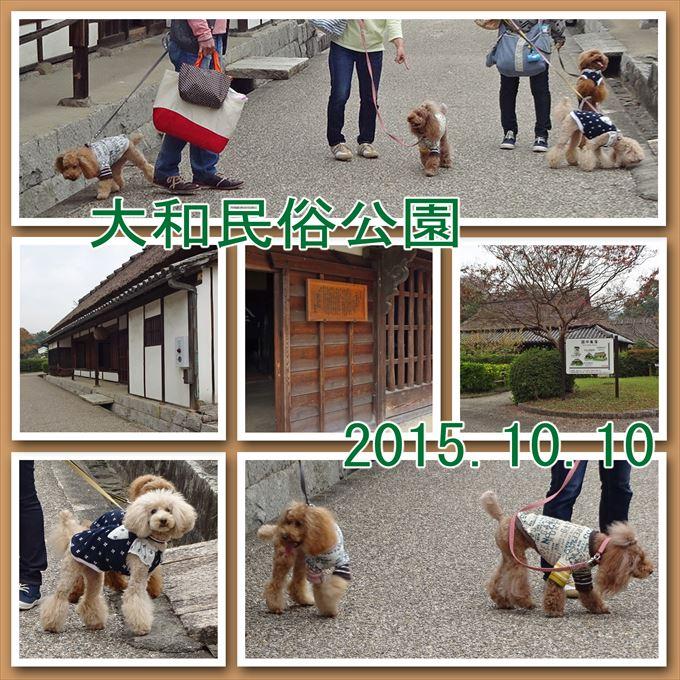 261_201512061919154db.jpg