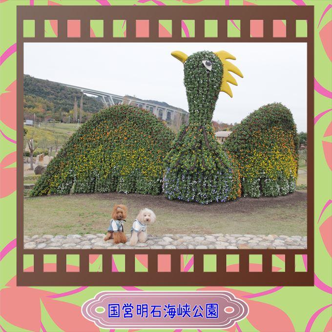 304_201602141741313ed.jpg