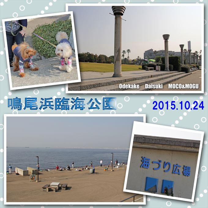 40_20151230175241d7b.jpg