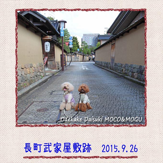 47_20151026204637490.jpg