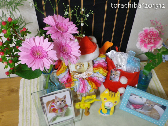 torachiba15-12-02.jpg