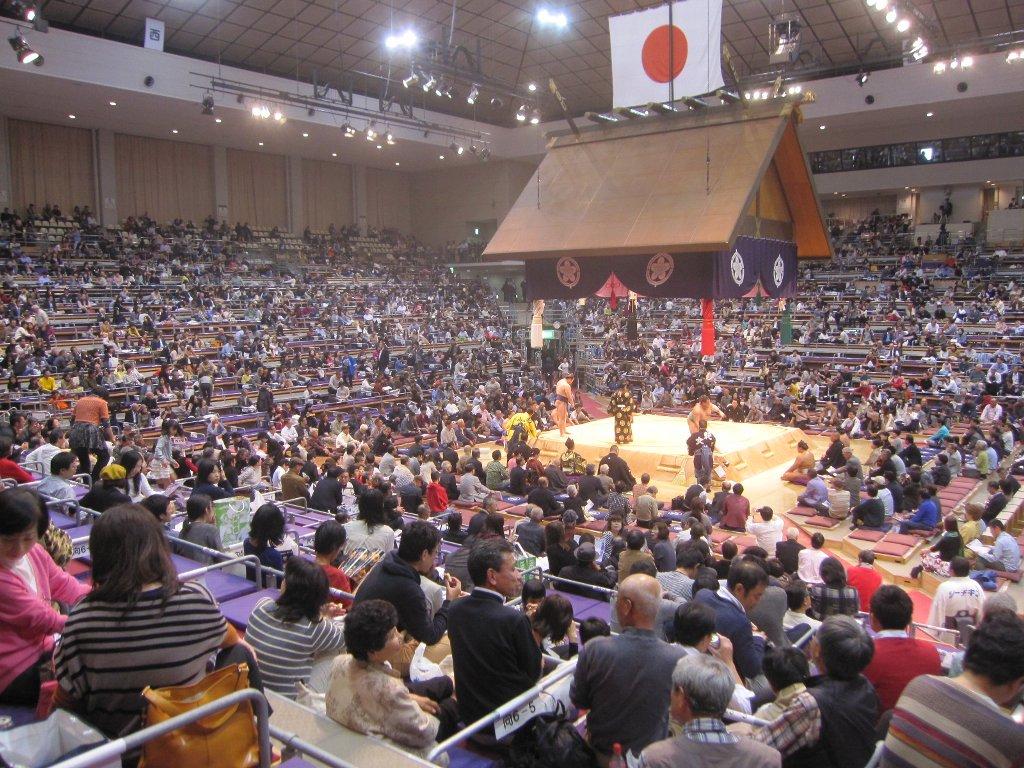 大相撲平成27年11月場所全景