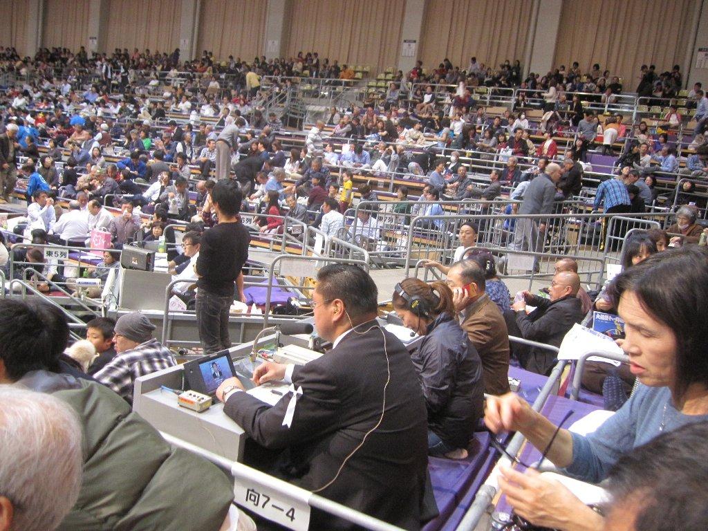 大相撲平成27年11月場所向正面解説