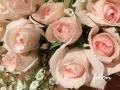 発表会お花♪01
