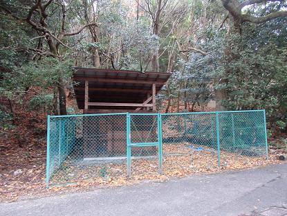江之浦鹿保護施2