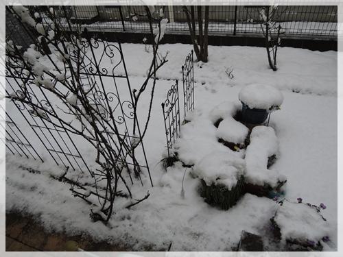 雪20160118