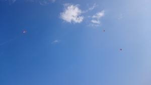 2016年1月4日ソラノモリ体験と凧揚げ (22)