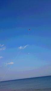 2016年1月4日ソラノモリ体験と凧揚げ (19)