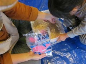 2016味噌作り (34)