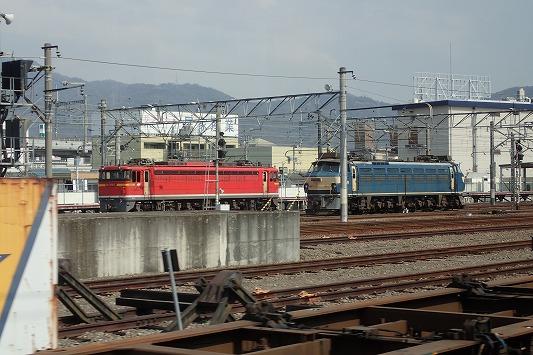 P3050697.jpg