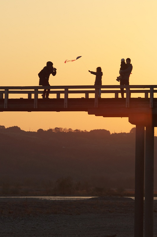 夕暮れの蓬莱橋