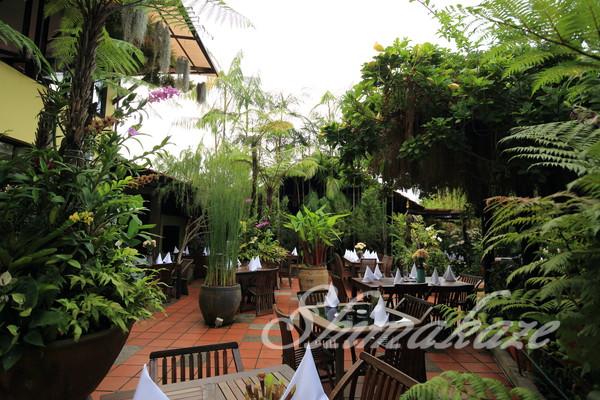ペナン島旅行 VISA取得 シャングリララササヤンリゾート