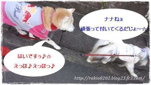 ナナらき散歩☆☆