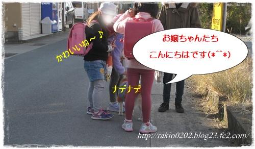 ナナらき散歩4☆