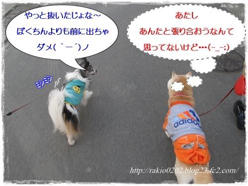 ナナらき散歩7☆
