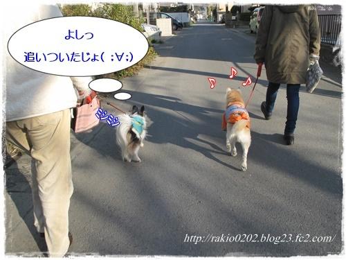 ナナらき散歩8☆