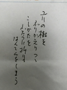 IMG_4707.jpg
