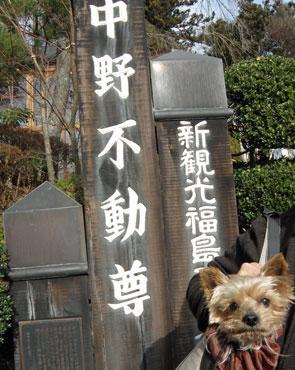 中野不動尊3