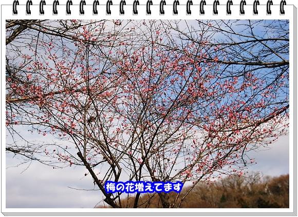 2480ブログNo4
