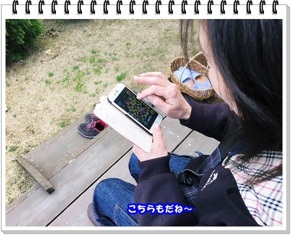 2522ブログNo4