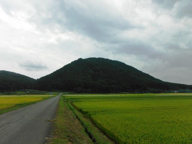 薬師岳(信濃町) (47)