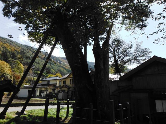 木曽義仲居館 (1)