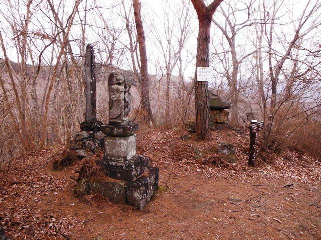 柳沢城(東吾妻町) (11)