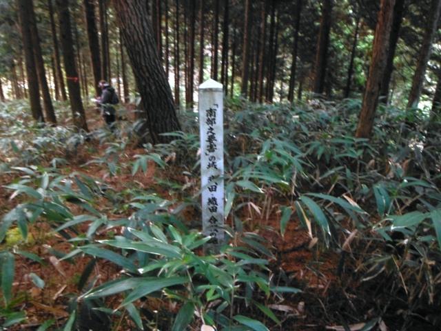 滝之沢城 (20)