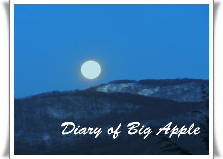 大雪でも夜は満月