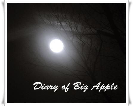 旧正月の満月