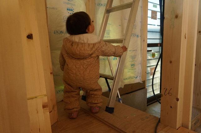 子供、はしごを登ろうとする