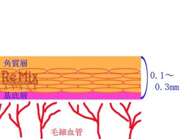 炭酸と肌1
