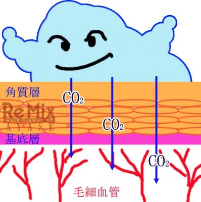 炭酸と肌3
